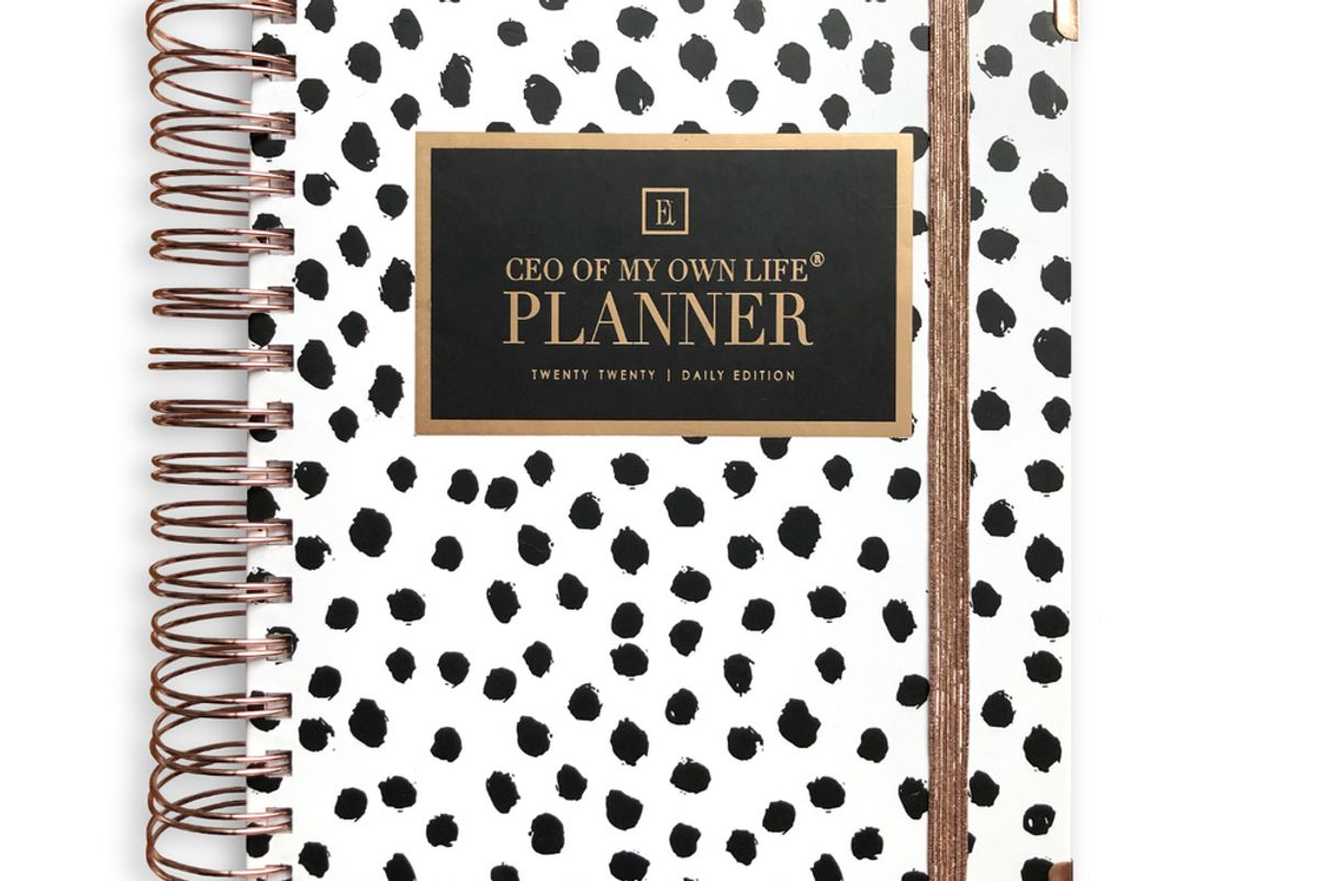 ella iconic 2020 daily ceo of my own life planner dalmatian