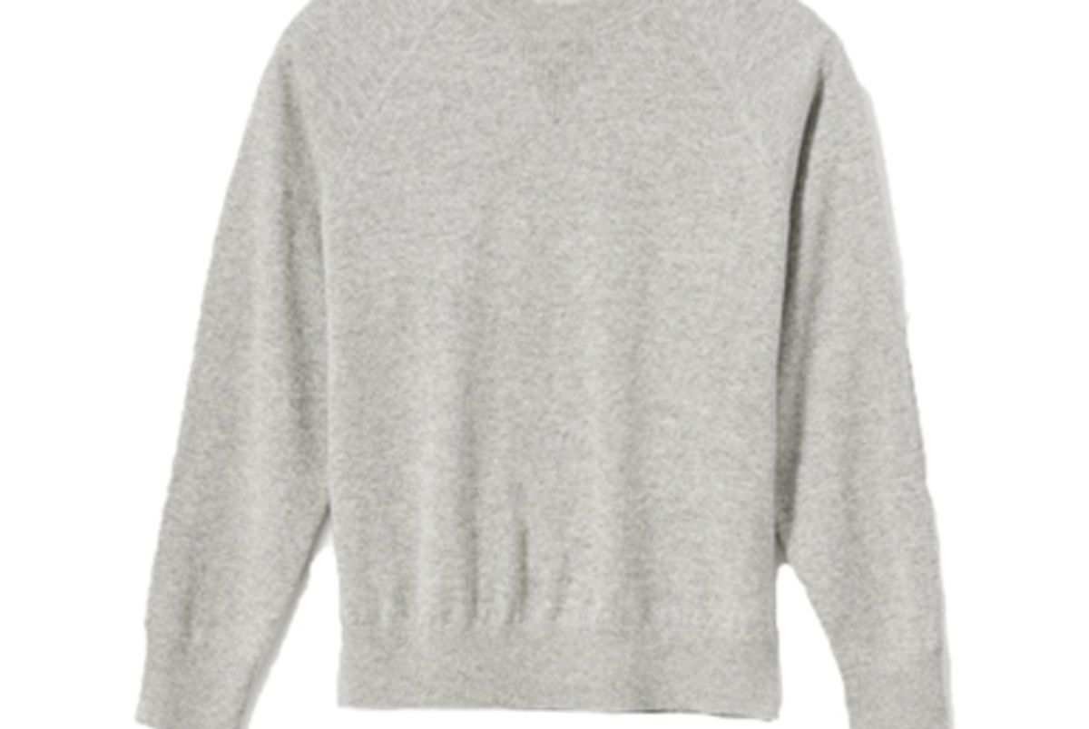 everlane ashmere shrunken sweatshirt