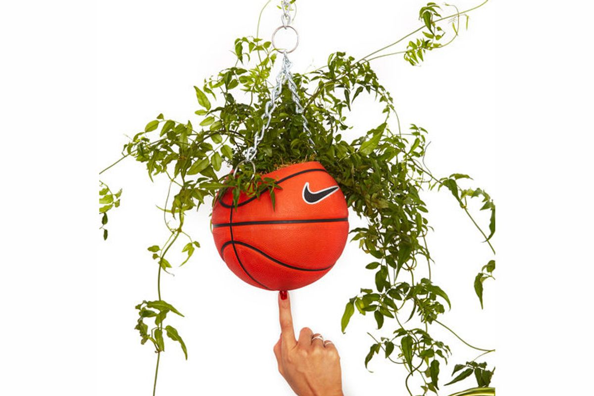 bodega rose nike basketball planter