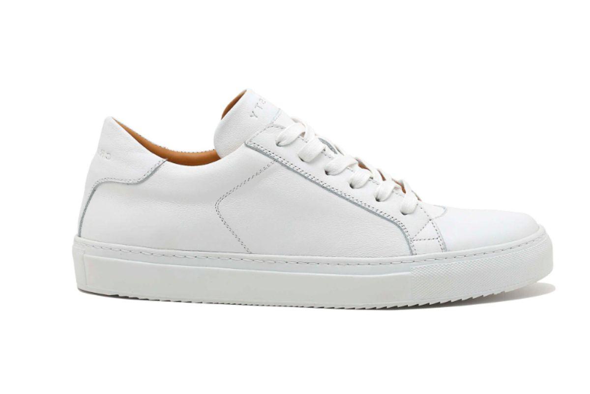 crosty elan sneakers