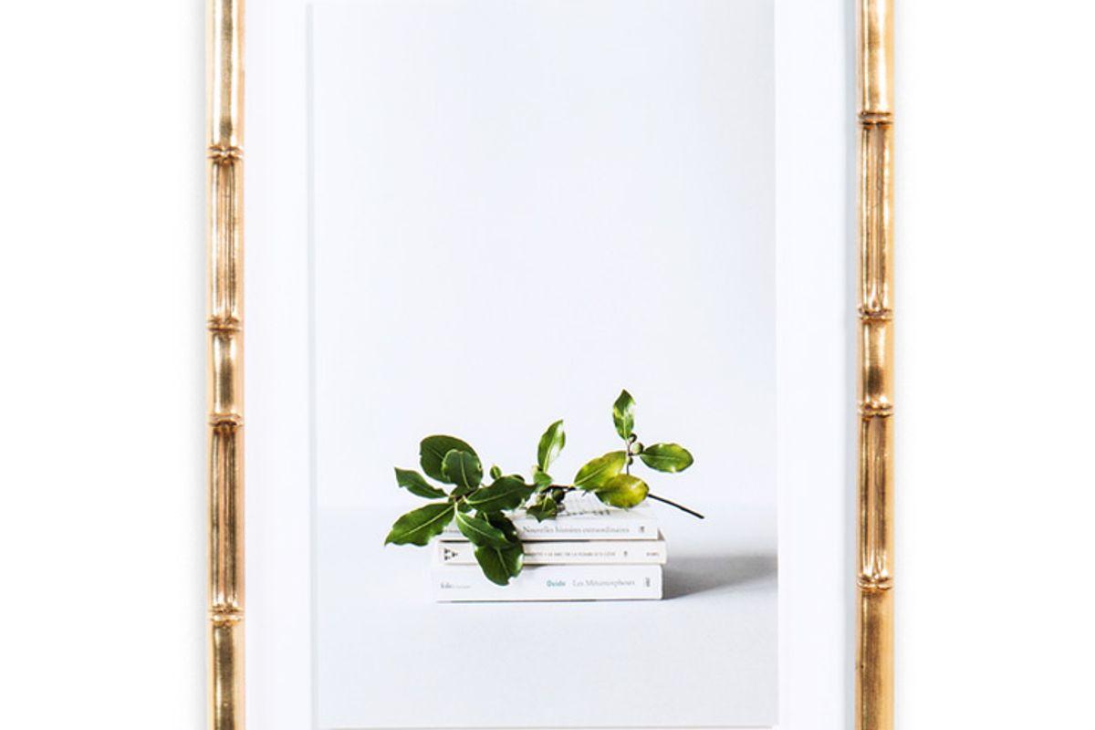 frambridge lucia blush bamboo frame