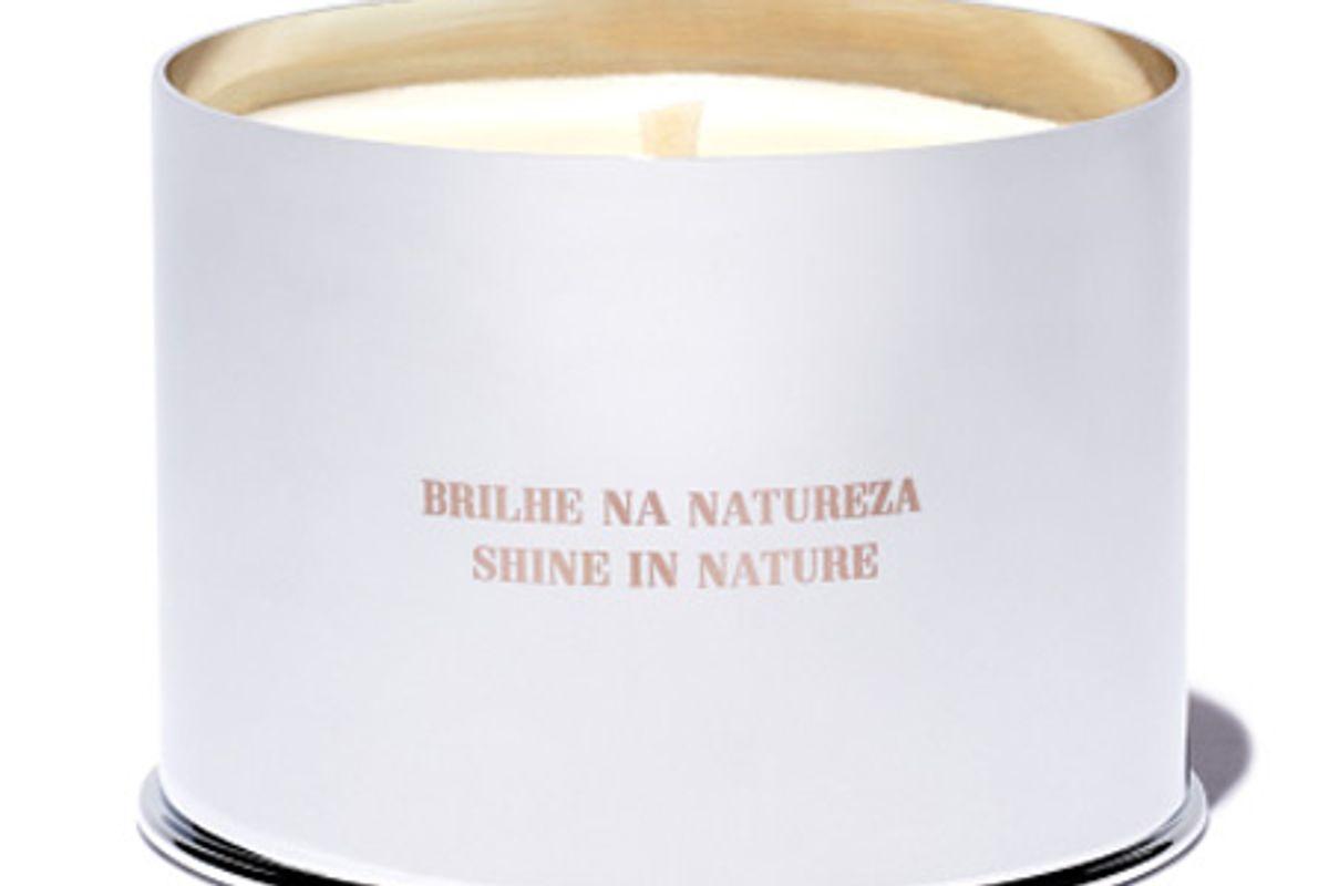 costa brazil vela jungle candle