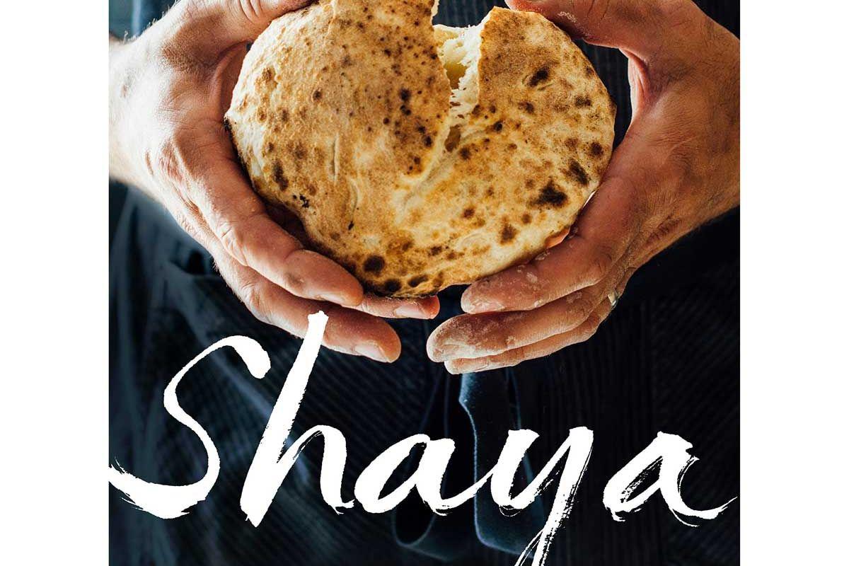 alon shaya shaya an odyssey of food my journey back to israel a cookbook