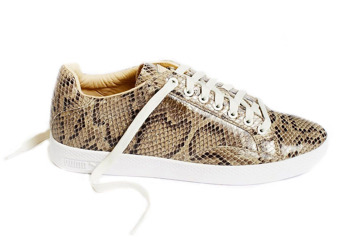 Match Animal Court Sneaker