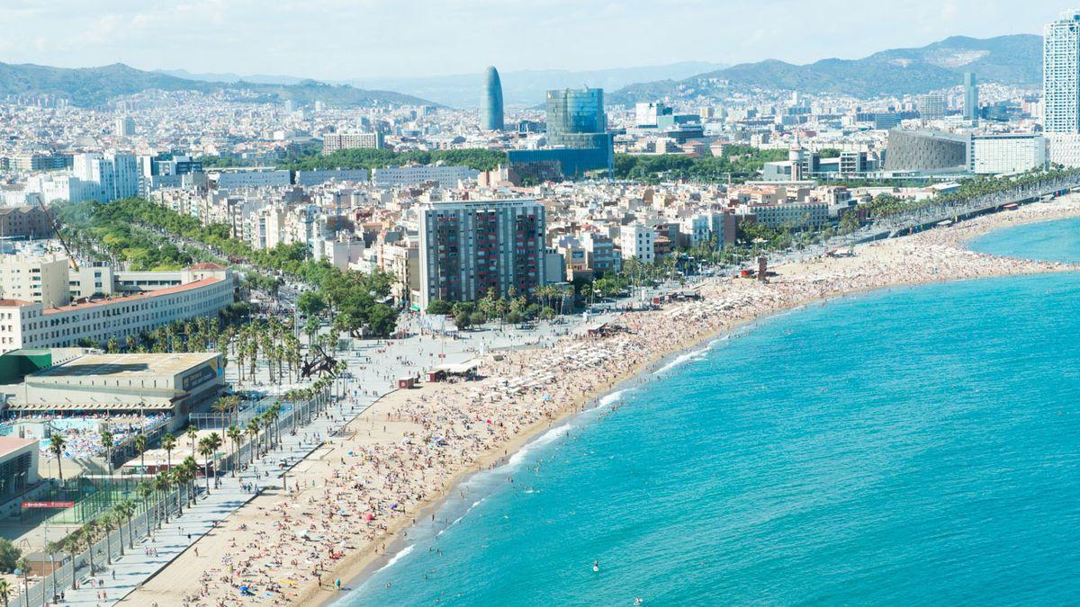 5 Must-Try Tapas Restaurants in Barcelona