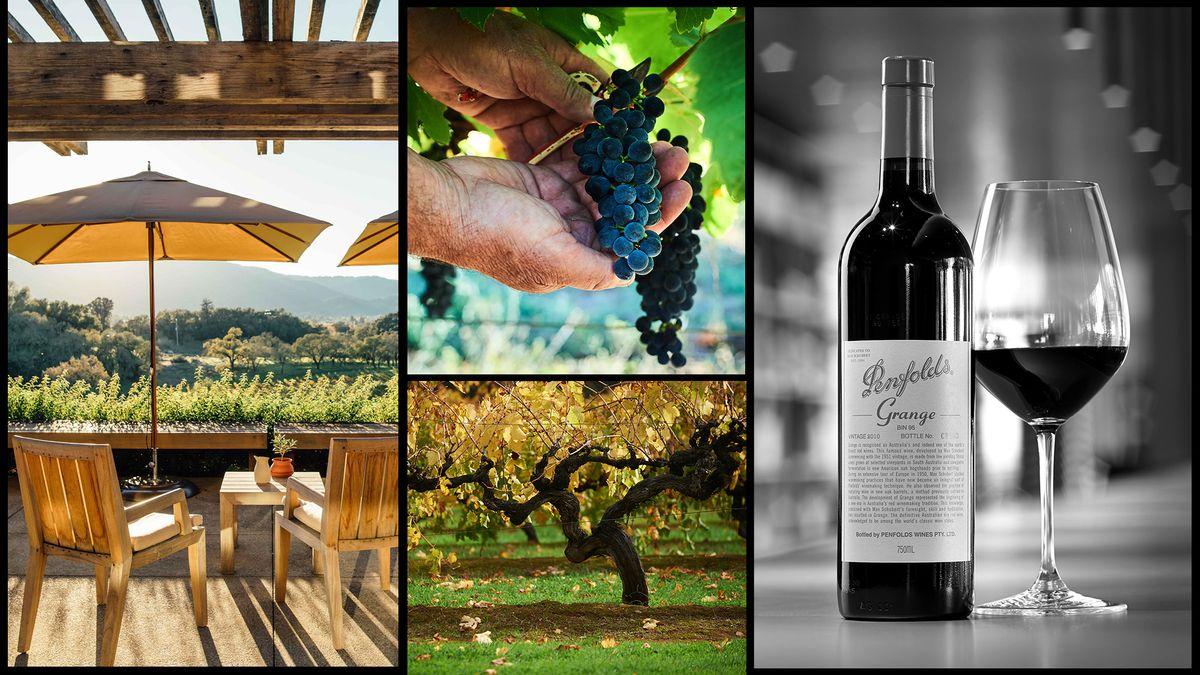 summer food and wine pairings