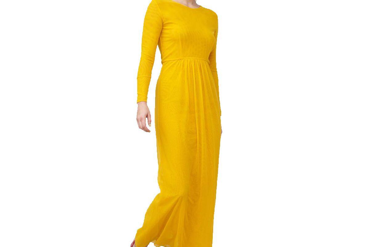 priscavera long sleeve mesh dress