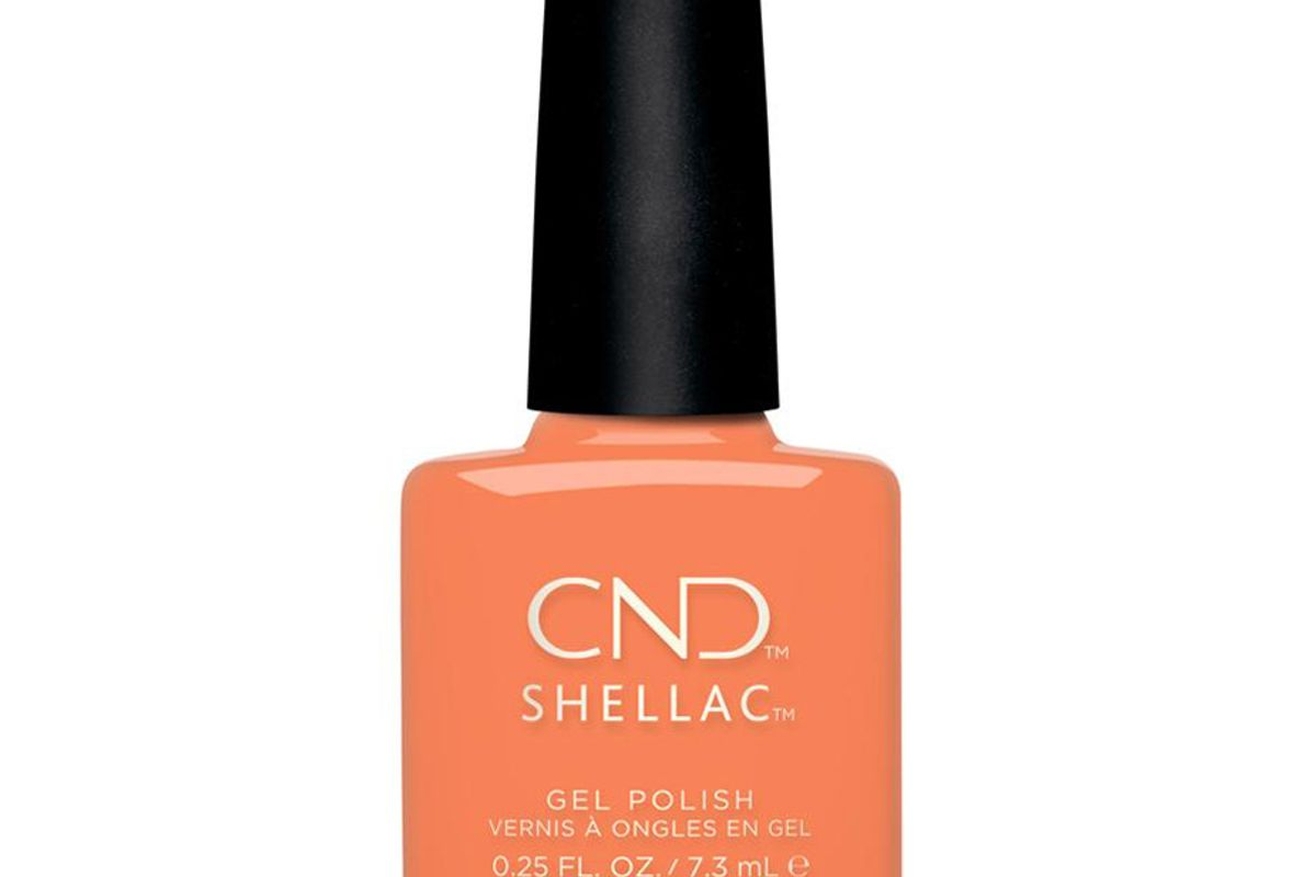 cnd shellac catch of the day