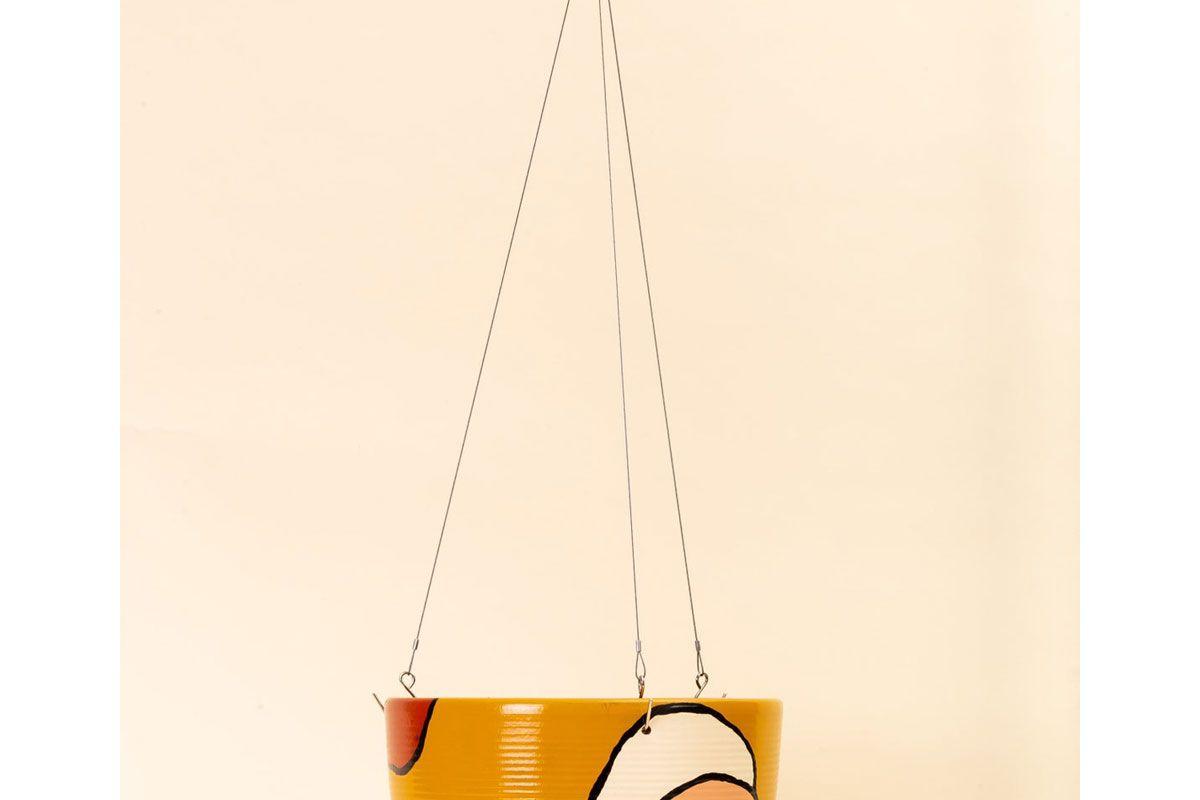 pepper palm hanging basket