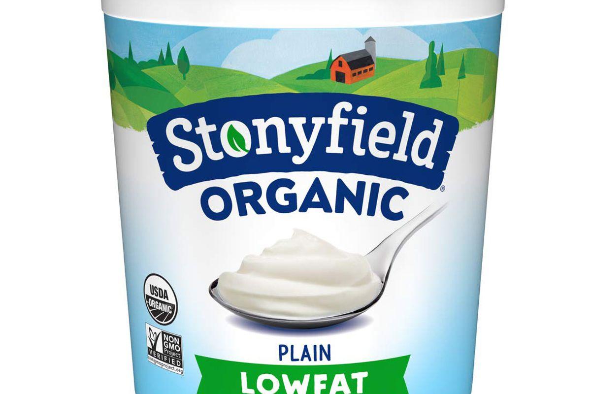 stonyfield organic plain lowfat yogurt