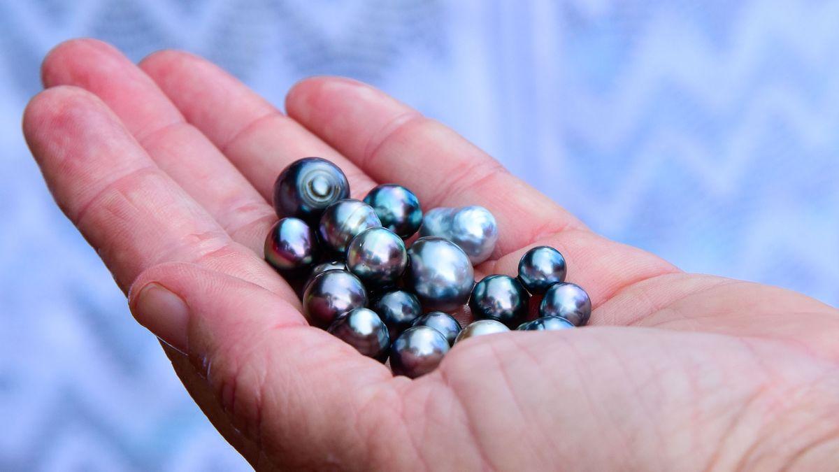 pearl diving in tahiti