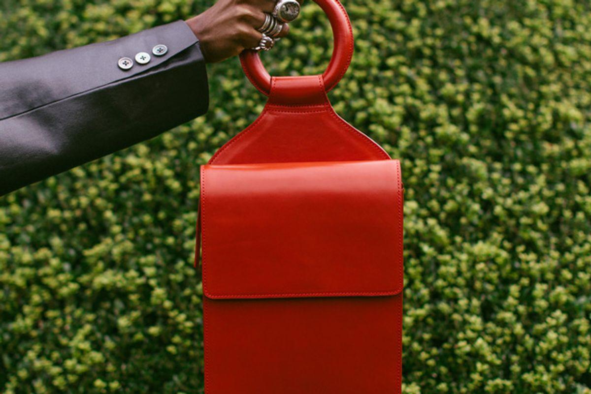 ashya shema slingback bag