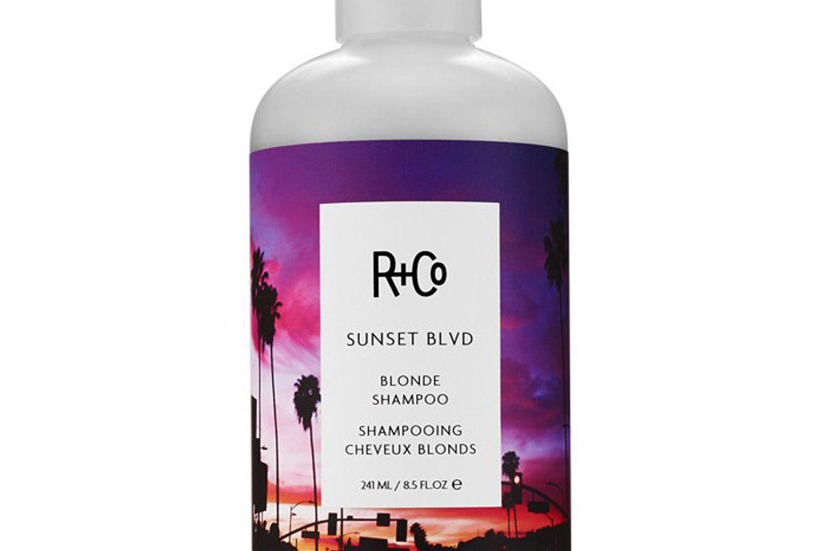 Sunset Blvd Blonde Shampoo