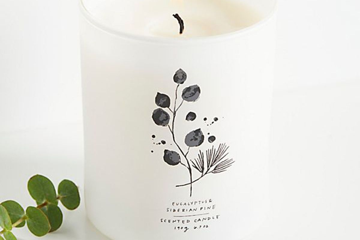 free people eucalyptus and siberian pine candle