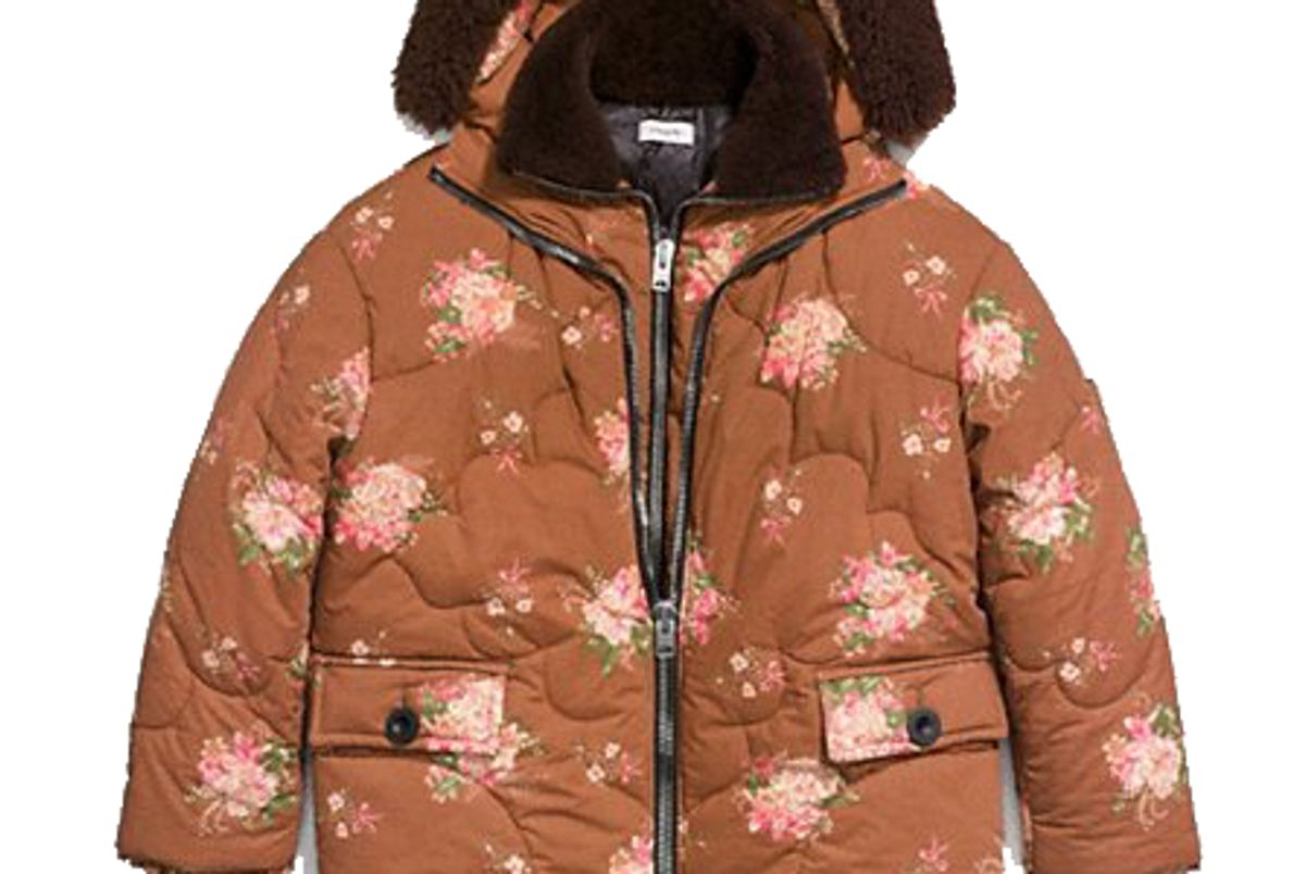 coach oversized eiderdown printed puffer jacket