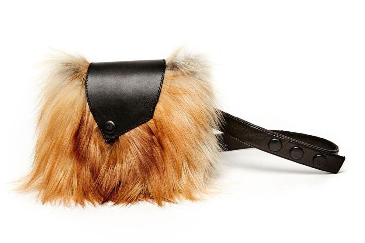 Furry Fanny