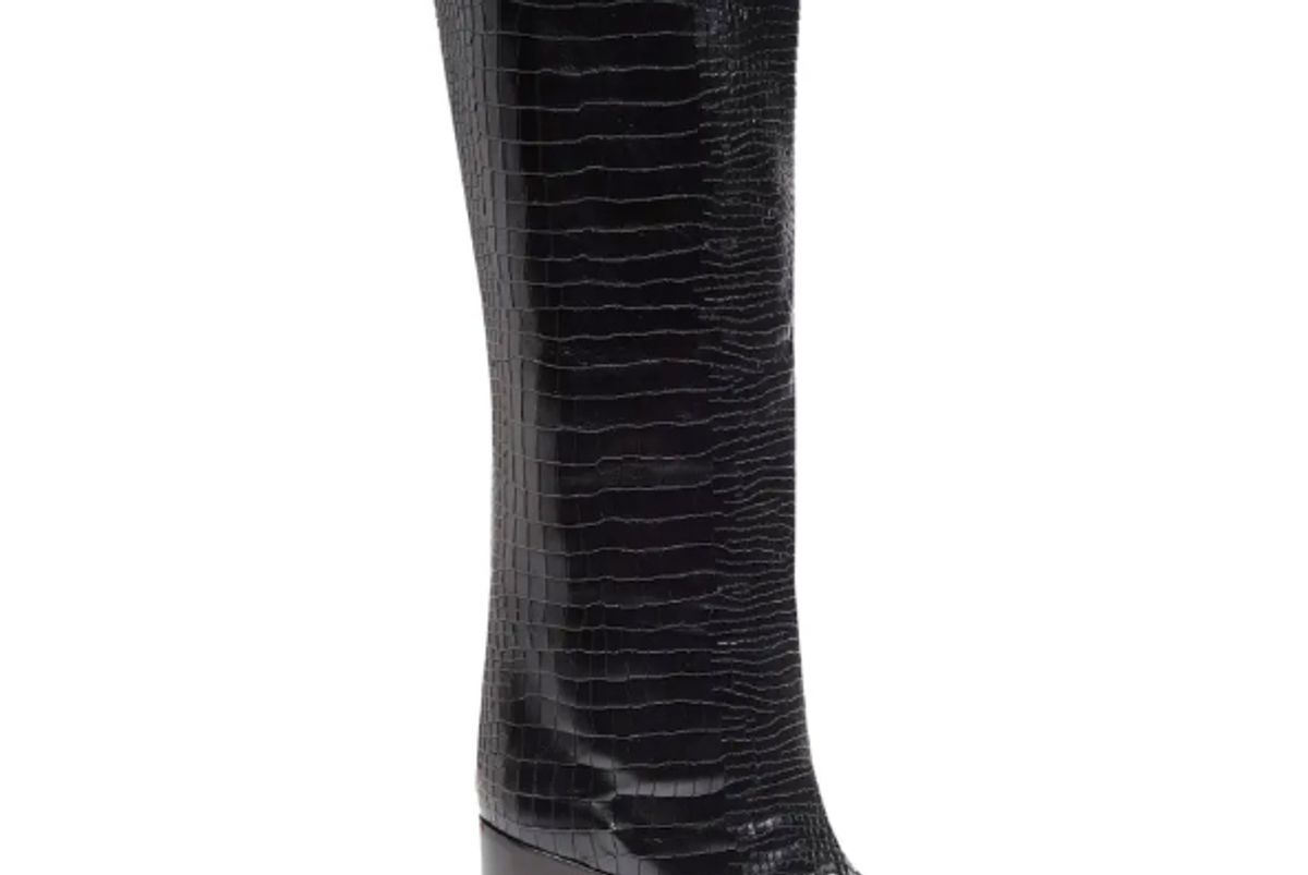 schutz analeah pointed toe knee high boots