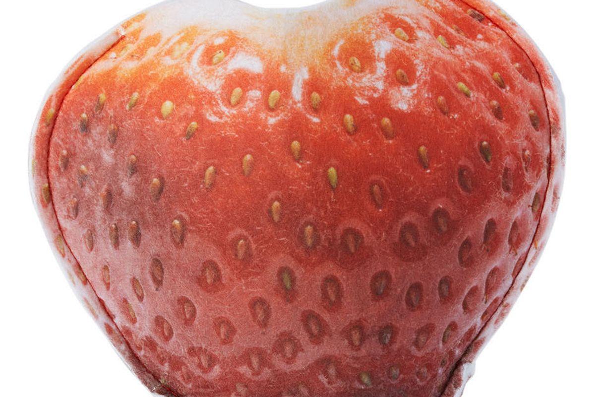 collina strada benjamin langford edition small strawberry planter cover