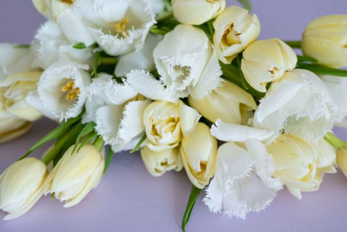 farmgirl flowers white tee