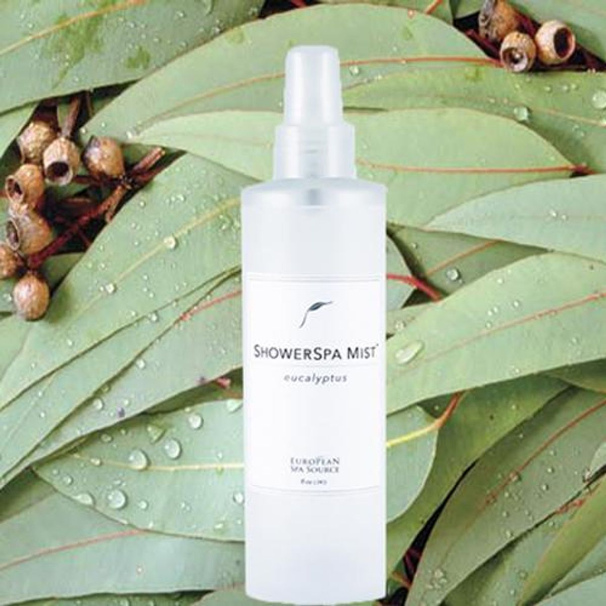european spa service classic eucalyptus showerspa mist