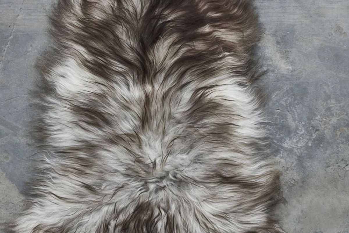 the organic sheep sheepskin longhair rug
