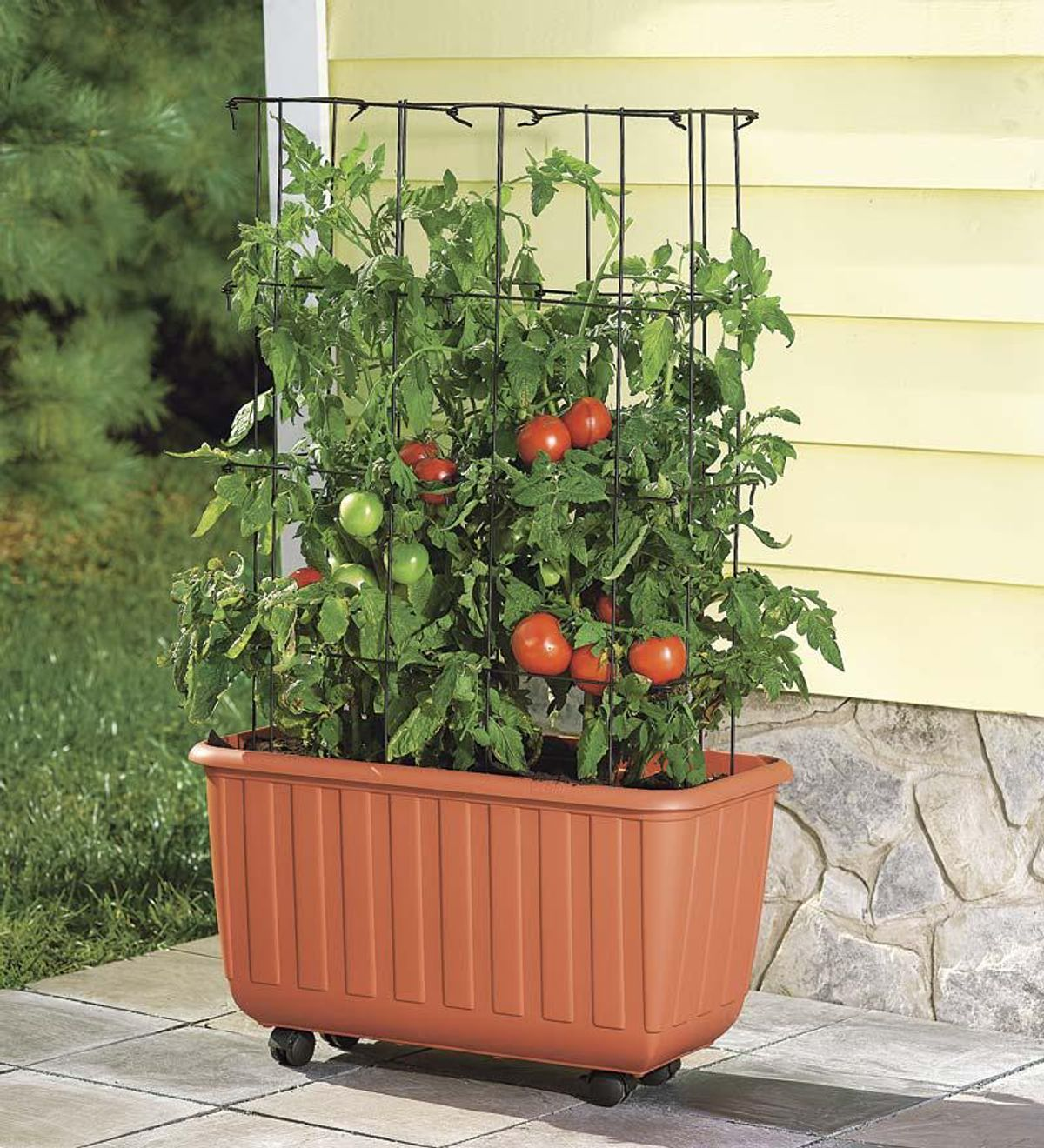 plow and hearth rolling self watering tomato planter and rust resistant tower