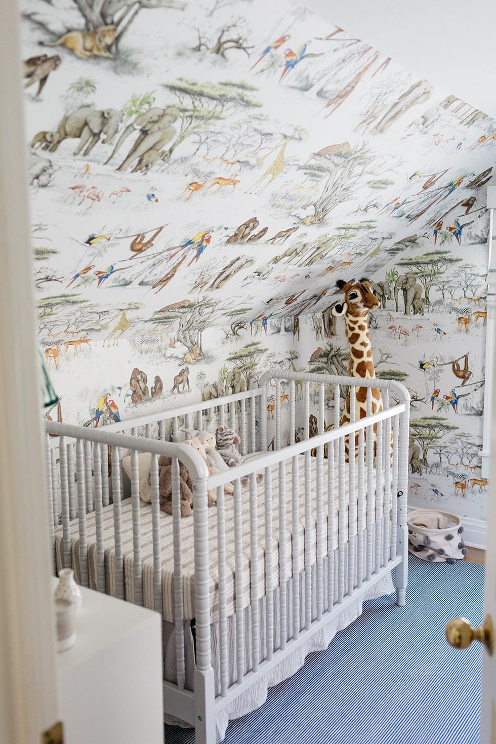 carly cardellino nursery