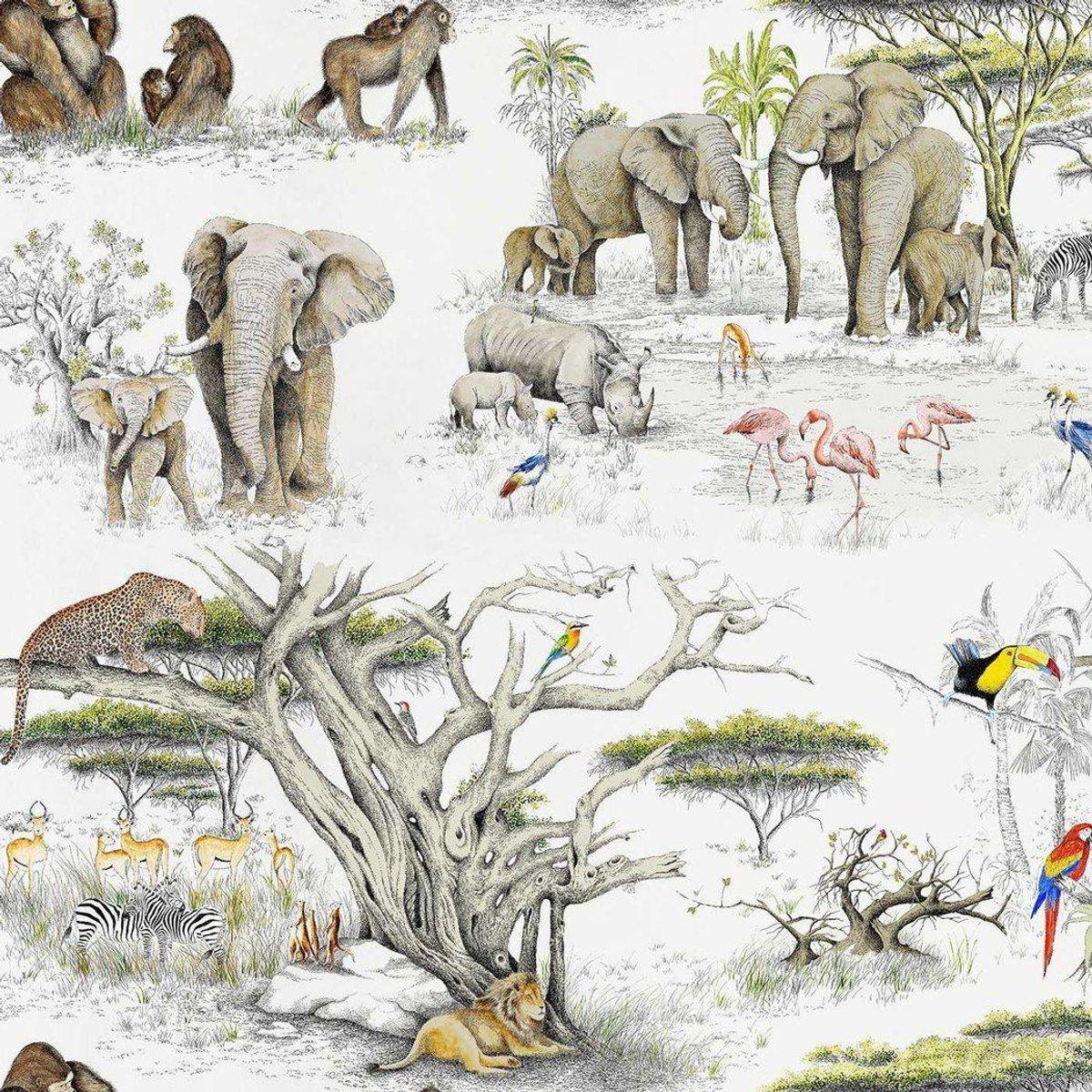 Masai Mara Wallpaper