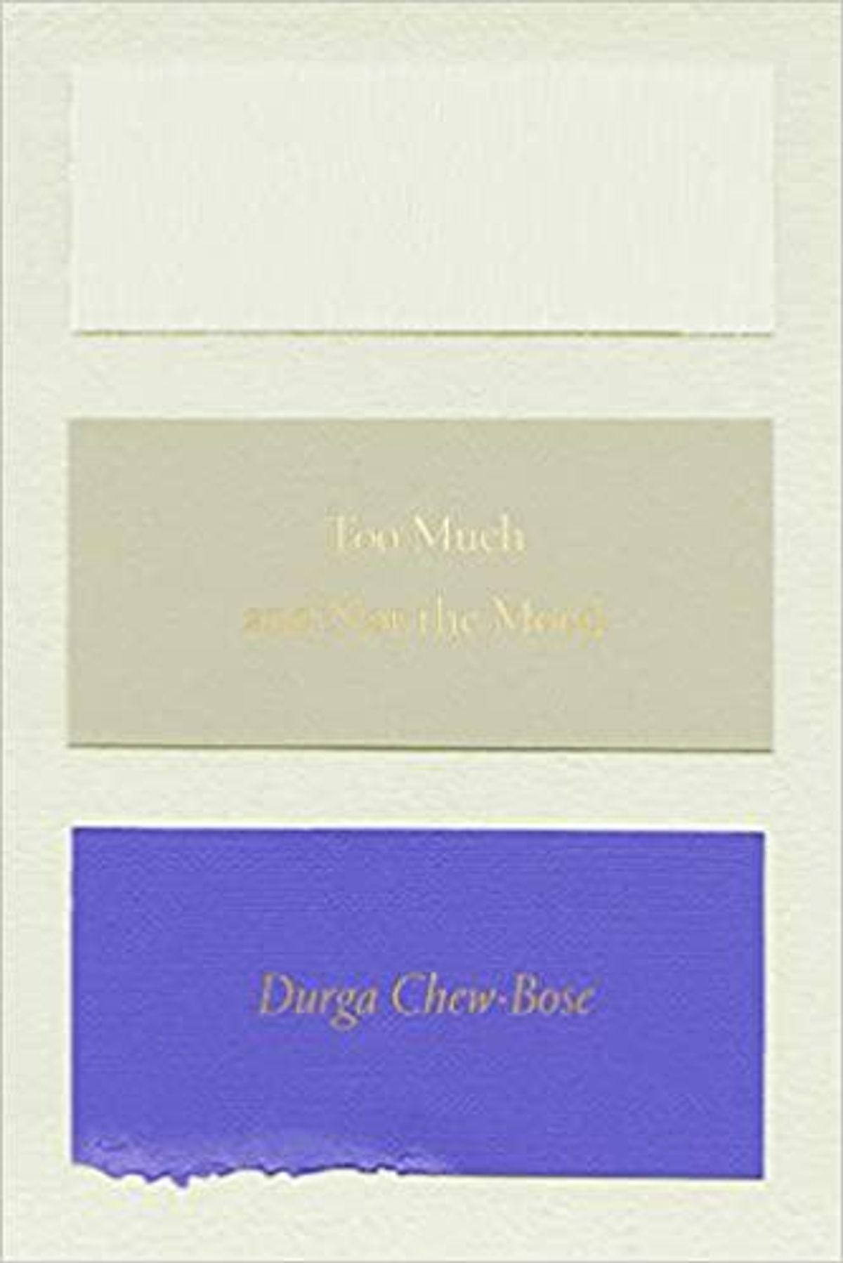 durga chew bose too much and not the mood essays