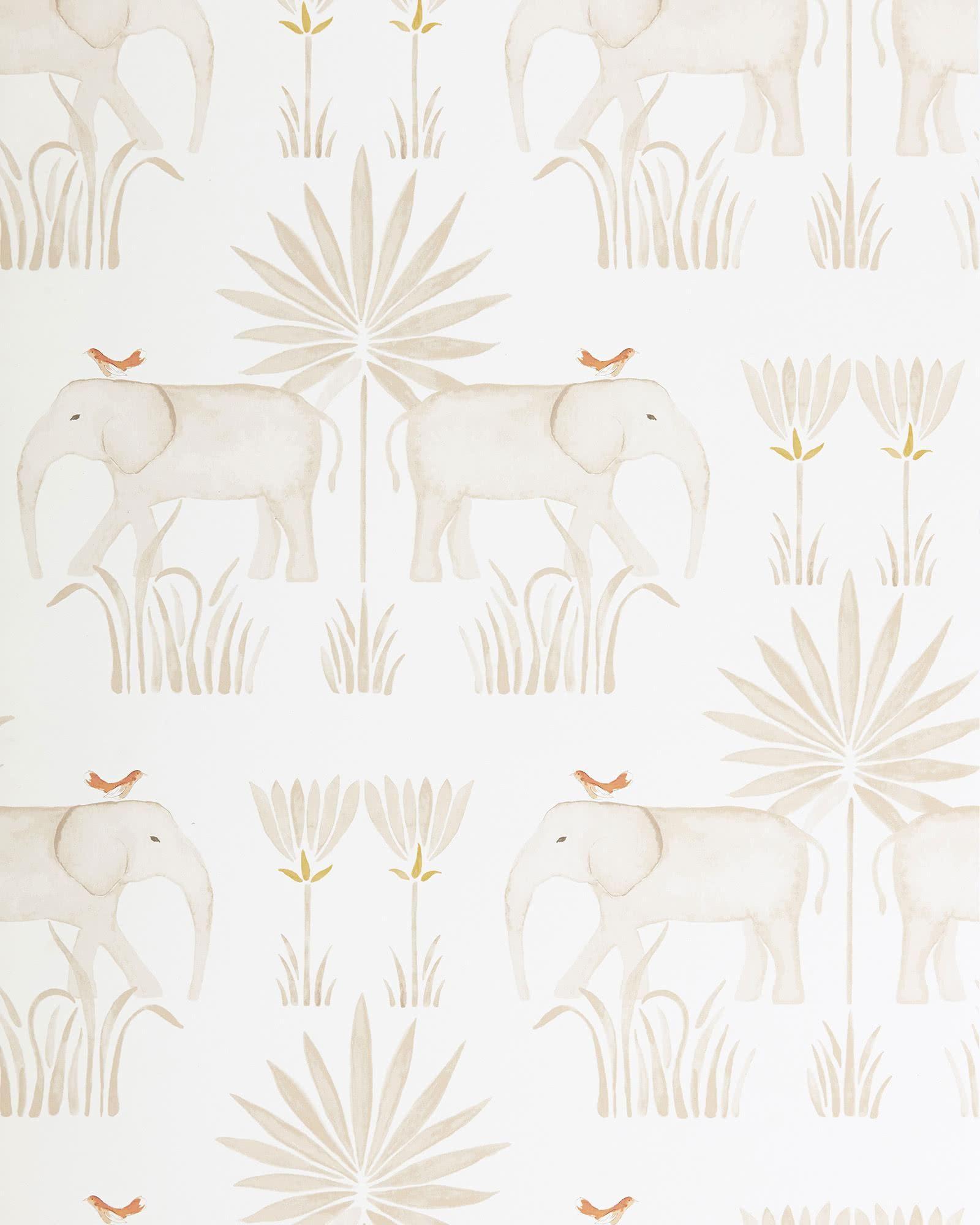 Kalahari Wallpaper
