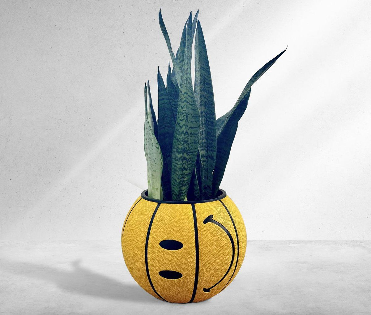 ol dirty planters chinatown smiley face basketball planter