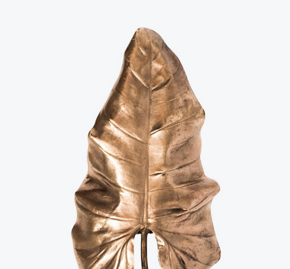 Philidendron Wall Lamp