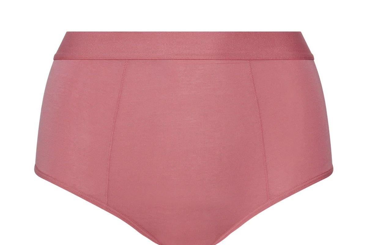 kit undergarments high waist boy brief