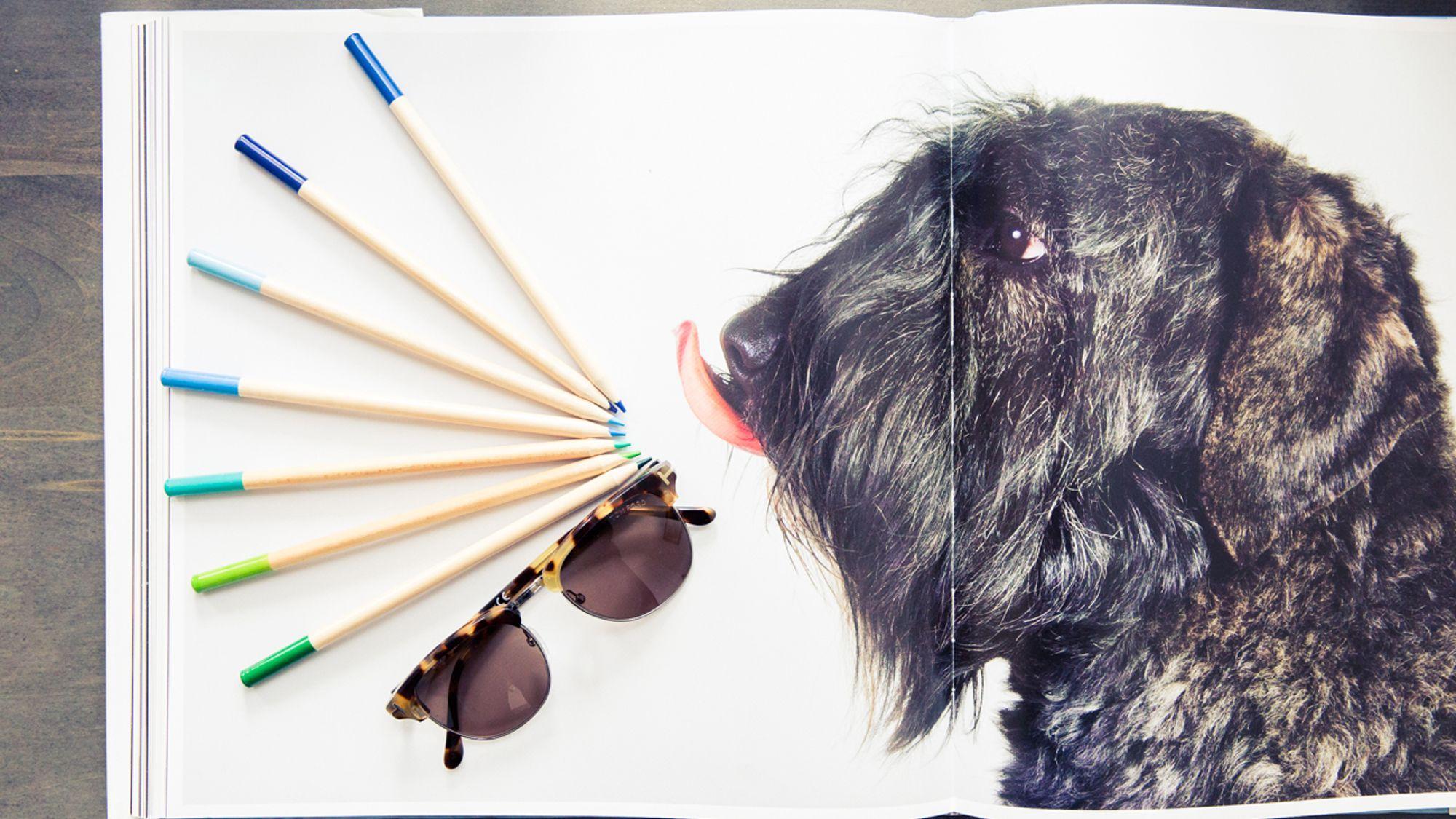 regulations on cosmetic testing on animals 2019