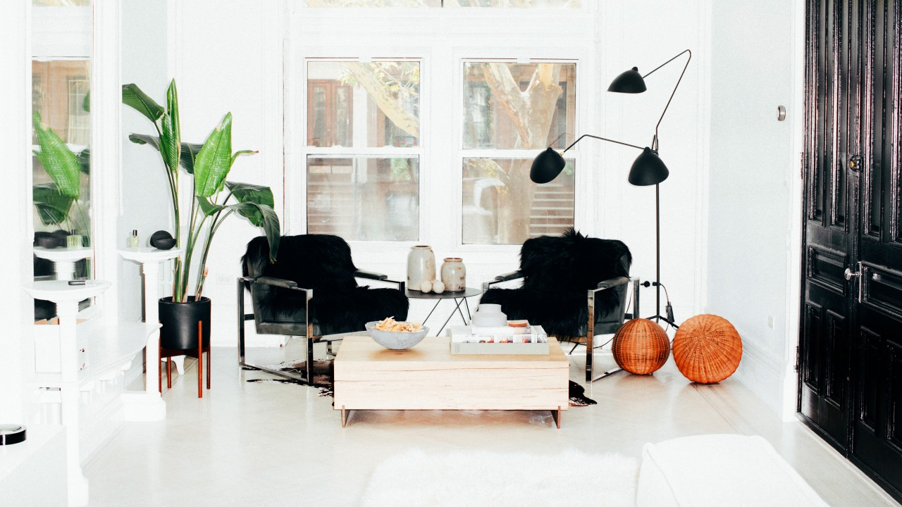 Inside a Modernist Monochromatic Brownstone with a Dog to Match
