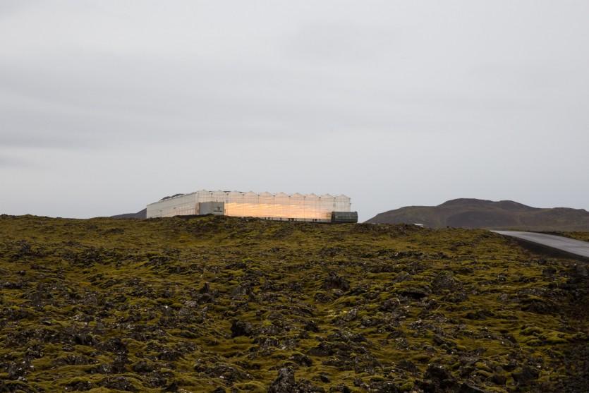 bioeffect lab greenhouse