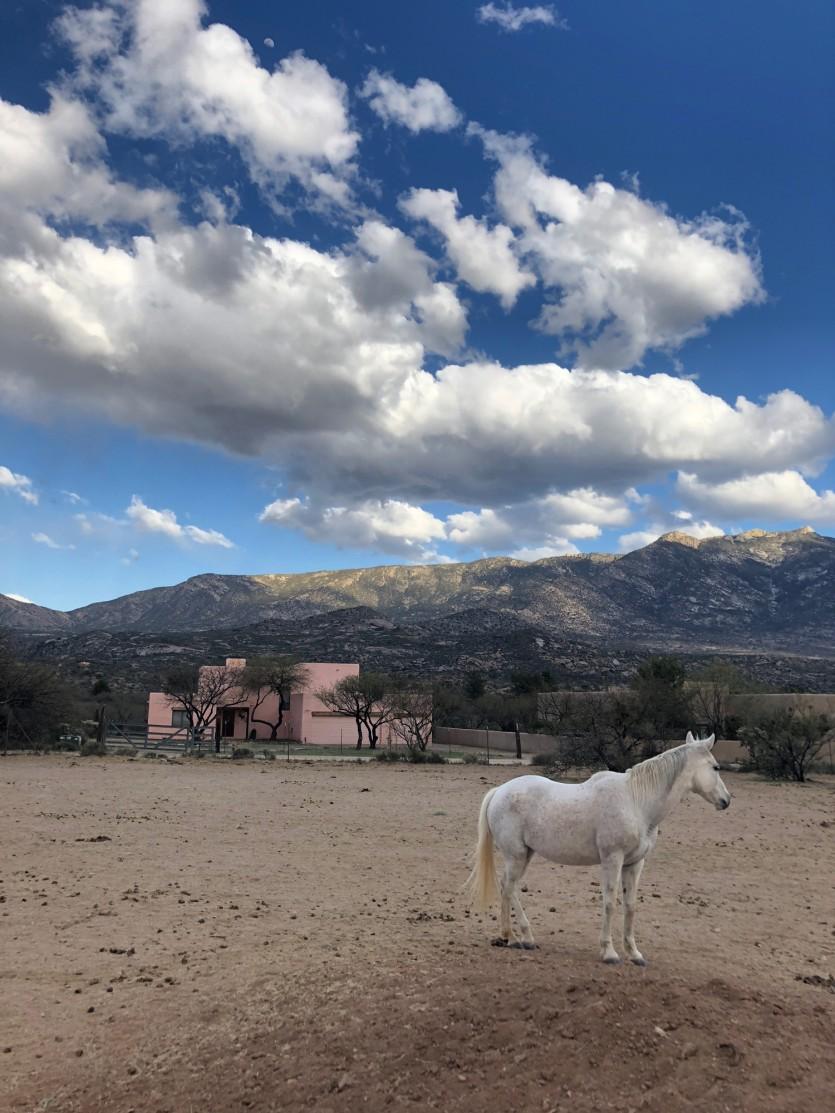 miraval resort arizona outdoor activities