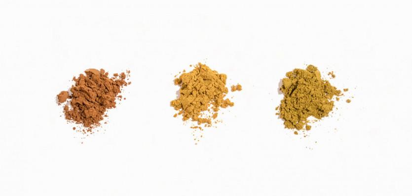 golde turmeric powder