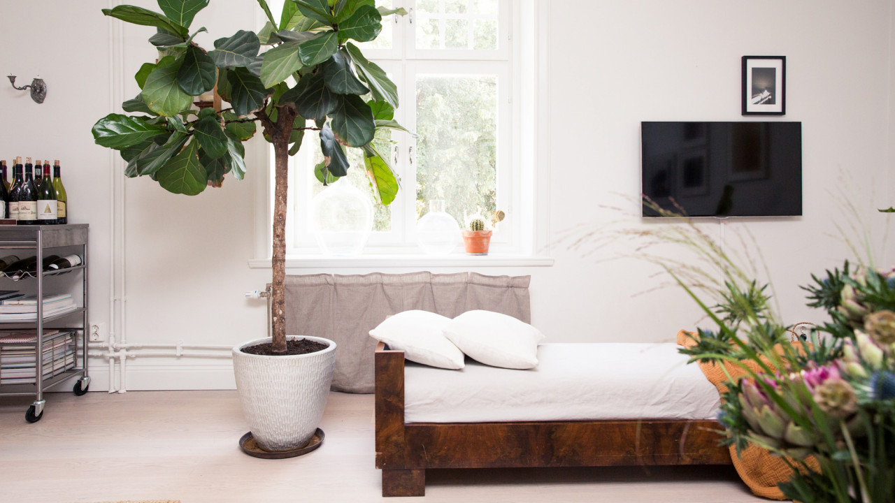 Lagom Is the Anti-Kondo Method & It Might Just Be Right for You