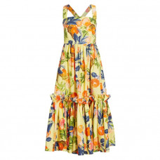 cara cara julia print apron fit and flare dress
