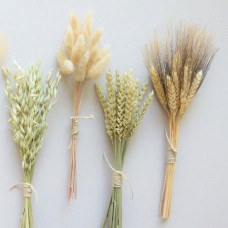 moonflowernatureart dried grass bunched dried flowers rustic table decor flowers for bud vase dried grains dried fall decor dried wheat bunny tails grass